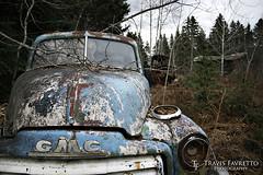 GMC (tfavretto) Tags: abandoned algoma branches car fender forgotten gmc havilah hempfest hood ophir paint pickup rusty rust rusted shack truck leeburn poplar dale grill