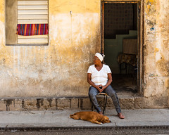 Street photography old Havana (dwb838) Tags: 8x10 havana doorway urbanlandscape window womanwithdog street