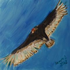2018 Avian Portrait 20190226 (caligula1995) Tags: 2018 2019 acrylic birding painting