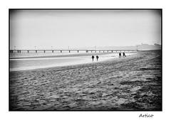 Walking on the foggy beach (Artico7) Tags: foggy beach lignano sand sea water people landscape blackwhite bw blackandwhite biancoeenero monocrome fuji xe1 digital pier cold winter