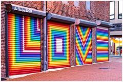 2019/008: LOVE (Rex Block) Tags: love nikon d750 dslr 50mm f18g dc washington blagdenalley garage mural streetart lisamarie project365 365the2019edition 3652019 day8365 08jan19 thalhammer