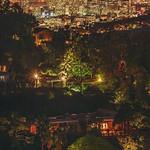 Los Angeles at Night thumbnail