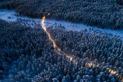 Elljusspår i Hemlingby (olleeriksson) Tags:
