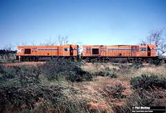 4043 R1905 RA1909 talc  grain train Three Springs 7 October 1983 (RailWA) Tags: railwa philmelling westrail 1983 ra1909 r1905 three springs