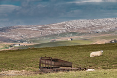 Harwood Apr 2019 (1) (Richard Laidler) Tags: aonb areaofoutstandingnaturalbeauty countydurham darkclouds earlyspring fell fells globalgeopark harwood hill hills hillside landscape moor moorland moors northeastengland northpennines northpenninesaonb pennine snow sun sunny sunshine teesdale upland upper upperteesdale windy wintrysunshine