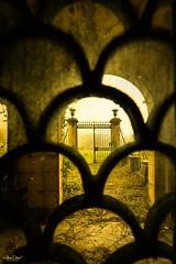The lucifer gate (olivier.debot) Tags: château portail porte vitrail jaune ferronnerie pierre voute ronce végétation poterie ornement urbex rurex decay abandonner abandoned explorer exploration nikon d7100 lucifer