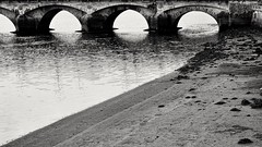O Burgo bridge, Pontevedra (Jano_Calvo) Tags: pontevedra river burgo water shore bridge blackandwhite eyes city street sony ilce a6000 alpha mirrorless sigma 30mm art