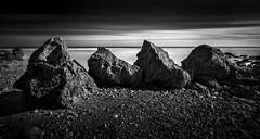 The Four Sisters at Trow Rocks, South Shields (solidtext) Tags: south shields beack rocks trow four sisters long exposure blackandwhite mono sea
