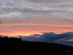 WW = Wald und Wolken (elisabeth.mcghee) Tags: abendrot abendhimmel abendsonne sunset sonnenuntergang himmel sky wolken clouds unterbibrach bäume trees wald forest oberpfalz upper palatinate
