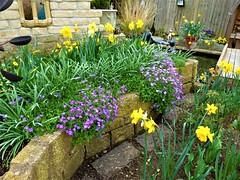 P1080592 (KENS PHOTOS2010) Tags: flowers gardens gardening