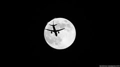 Moon & plane 20/03/19 (edgarjuk) Tags: winner moon plane vko 2019 march sky