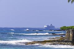 BIG-ISLAND-HAWAII_DSC2531 (Donna Molinari Photography) Tags: hawaii