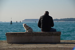 The dog walking app ! (shanahands2) Tags: dog man bench venice lagoon