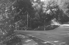 Mount Dandenong Tourist Road (Matthew Paul Argall) Tags: spartus35fmodel400 35mmfilm kentmerepan100 100isofilm blackandwhite blackandwhitefilm road street mountdandenongtouristroad