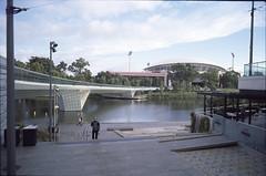 (harrybv319) Tags: leicam6 leicasummicronm282asph newektachrome100 hasselbladflextightx5 atkinslabadelaide rivertorrens adelaide southaustralia adelaideriverbankpedestrianbridge
