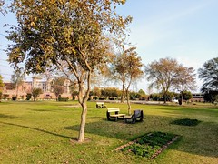 Comsats lhr (sixline) Tags: pakistan lahore comsats mobilephone nature nokia bench grass green trees