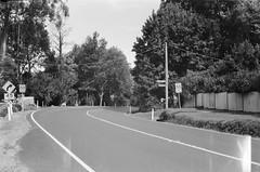 A curve in the road (Matthew Paul Argall) Tags: beirettevsn 35mmfilm kentmere100 100isofilm blackandwhite blackandwhitefilm road street mountdandenongtouristroad