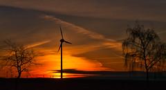 Sonnenaufgang - sunset (achim-51) Tags: sonnenaufgang himmel windrad landschaft landscape orange bäume natur panasonic dmcg5 lumix