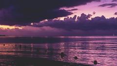 Lavender Skies- Moorea, French Polynesia (Flortography) Tags: frenchpolynesia polynesia polynesie polynesian moorea ocean horizon sunset sun light shadow water sea mar marine mer waves southpacific oasis tropical travel destination professional photo photography dusk twilight sky bluesky summer coast coastal foto fotografia colors shadows