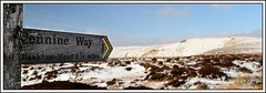 Show me the way (pygarian_nox) Tags: finger post pointer way marker snow hills bleaklow landscape derbyshire glossop bamford