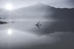 Pure Morning (Sconsiderato) Tags: alba nebbia fog lago lake sconsiderato sun sunset bianco white photo canon eos acqua water reflex sole riflessi riflesso montagne mountain morning