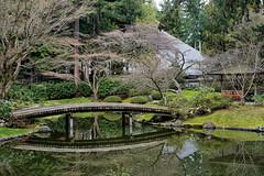 Nitobe Memorial Garden 新渡户紀念花園 (syue2k) Tags: british columbia 不列顛哥倫比亞省 canada vancouver 温哥華 nitobe memorial garden 新渡户紀念花園