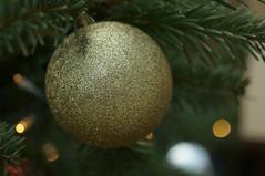 DSC00620- Golden Circle Glitter (oliveplum) Tags: poinsettiawishes2018 leica60f28macro gardensbythebay sony singapore bokeh ball golden decoration flowerdome