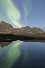 Northern Lights - Okseneset - Senja - Norway (nonac.eos@gmail.com) Tags: astrophotography aurora canon6d ef1635f28lii fish fisheyehemi kniferidged nightphotography nonaceos northernlights norway oksen okseneset senja sky starredsky stars tungeneset troms norvegia no