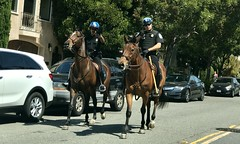 #SaturdayAfternoon in #SanFrancisco (Σταύρος) Tags: twohorses onhorseback parkpolice sfpd police mountedpolice sanfrancisco thecity marinagreen saturdayafternoon marinadistrict sf city sfist санфранциско sãofrancisco saofrancisco サンフランシスコ 샌프란시스코 聖弗朗西斯科 سانفرانسيسكو kalifornien californië kalifornia καλιφόρνια カリフォルニア州 캘리포니아 주 cali californie california northerncalifornia カリフォルニア 加州 калифорния แคลิฟอร์เนีย norcal كاليفورنيا