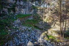 El camino pedregoso (SantiMB.Photos) Tags: 2blog 2tumblr 2ig santjoandelesfonts garrotxa girona invierno winter basalto basalt rocas rocks camino way path boscarró geo:lat=4221363167 geo:lon=250990766 geotagged santjoanlesfonts cataluna españa esp