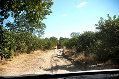 The Sand Highway_6710 (hkoons) Tags: chobenationalpark nationalpark southernafrica 4wheel africa botswana chobe kasane riverbed savuti avenue driveway gravel highway path road rocks rocky sand stones track