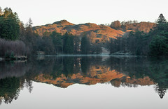 A time to reflect (Darren Knight Photo) Tags: reflections lake district landscape photography tarn hows coniston water sky sunrise sunset calm mountains fells