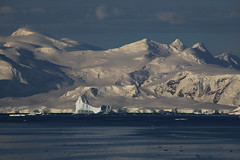 IMG_6860 (y.awanohara) Tags: cuvervilleisland cuverville antarctica antarcticpeninsula icebergs glaciers blue january2019