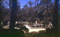 Garden (Spain?) (Arne Kuilman) Tags: lostandfound zimmermans photos photonotmine scan v600 epson holiday found gevonden garden tuin spain palms