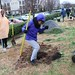 Ayrsley_Tree_Planting_2019_ (60)