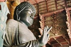 Blurry Buddha (GingerKimchi) Tags: nara osaka japan travel nature asia film 35mm fujifilm canon deer canona1 2019 spring february march