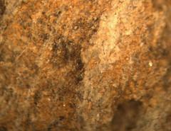 1552669403.643946 (jgdav) Tags: ancient micro image ochre quartz pigment blue pictograph rock america