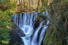 M4_28333 (3.3 mil views - Thank you all.) Tags: machynlleth wales unitedkingdom gb uk dyfifurnace staneastwood stanleyeastwood river furnace building waterwheel waterfall water wood copse