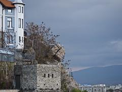 seagull on the rock_20190410 (h.m.a.t.s) Tags: bulgaria sofia plovdiv street streetphotography olympusomd omdem1markii streetlife