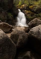After the rain 2 (Gary Eastwood) Tags: nikond750 nikon nisifilters waterfalls longexposures ndfilters forest ladiesbathfalls mtbuffalo water