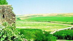 Diyarbakır (14 August 1993) 4