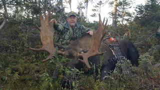 Newfoundland Caribou Hunt, Moose, Bear Hunting 42