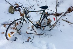 Frost coated wheels in the woods. The Free Spirit communicates a lot more 'free' than 'spirit'. (DjD-567) Tags: 03301 concord cheap freespirit bumbike ice snow abandoned frozen woods bicycle