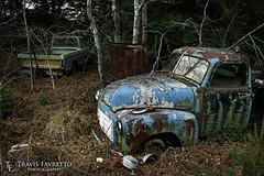 Parked in Poplar Dale (tfavretto) Tags: abandoned algoma branches car fender forgotten gmc havilah hempfest hood ophir paint pickup rust rusted rusty truck leeburn poplar dale antique classic