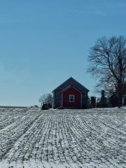 Two Sheds, a Tree, and a Field (joeldinda) Tags: fields farmyard sky plowed tree eatoncounty michigan roxana roxandtownship omd em1ii em1 barn building february 4455 omdem1mkii olympus weather snow winter 2019 40365