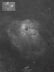 IC410, nebulosa de los renacuajos, 12h de integración total (24x1.800s), todo en H-alpha Astrodon. Telescopio Takahashi FSQ106, cámara QSI683wsg, montura Paramount. Datos provinientes de Deep sky west. (gerardtartalo) Tags: astrofotografia astrophotography astronomy astronomia space deepspace espacio cosmos nightsky nightphotography telescope telescopio nebulosa nebula star stars universe universo