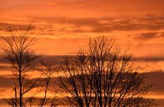 In This Moment (Keith Mac Uidhir 김채윤 (Thanks for 8m views)) Tags: orange sky light ciel lux luce cloud clouds cloudy sunset sun sunlight sunshine winter tree trees silhouette shadow nature ireland dublin irish irland iirimaa airija lirlanda irlandia írország 爱尔兰共和国 愛爾蘭共和國 írẹ́lándì cộng hòa ประเทศไอร์แลนด์ ирландия アイルランド 아일랜드 ιρλανδίασ dublino dublín 都柏林 ดับลิน дублин ダブリン 더블린 دبلن δουβλίνο دوبلین דבלין डबलिन