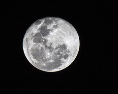 Winter Solstice 2018: Winter starts today; longest night followed by full moon 2018-12-23 (dbadair) Tags: outdoor night fullmone nature 7dm2 canon florida shortest day year longest