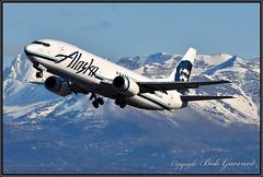 N764AS Alaska Airlines (Combi) (Bob Garrard) Tags: n764as alaska airlines boeing 737 combi anc panc avmax group