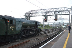 60103 Flying Scotsman (Will Swain) Tags: crewe station 21st september 2018 cheshire north west south county train trains rail railway railways transport travel uk britain vehicle vehicles england english europe 60103 flying scotsman